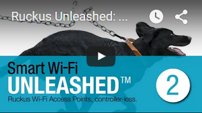 Video Unleashed 2
