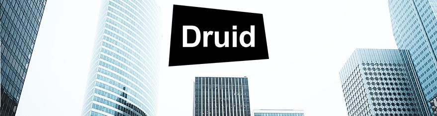 Distributeur Druid Software